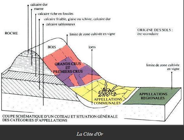 Bourgogne2