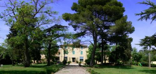 chateau2 (2).jpg