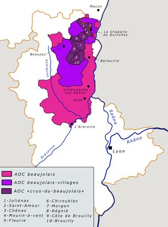 vignoble_beaujolais.png